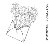 vector bouquet with outline... | Shutterstock .eps vector #1096691723