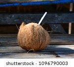 drinking coconut at summer day... | Shutterstock . vector #1096790003
