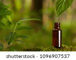 essential oil falling from... | Shutterstock . vector #1096907537