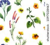 seamless plants pattern. floral ...   Shutterstock . vector #1097028467