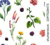 seamless plants pattern. floral ...   Shutterstock . vector #1097028473
