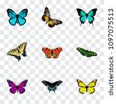 set of moth realistic symbols... | Shutterstock .eps vector #1097075513