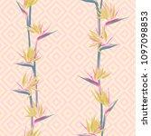 tropical flower bird of... | Shutterstock .eps vector #1097098853