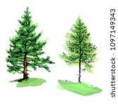 fir tree and pine green...   Shutterstock .eps vector #1097149343