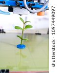 young plant growing.3d printer... | Shutterstock . vector #1097449097