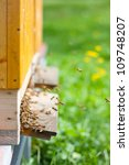 Honey bees swarming and flying around their beehive - stock photo