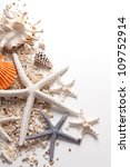 Seashells and starfish over white. Vacation concept . - stock photo