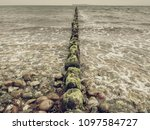the row of old wooden piles as  ... | Shutterstock . vector #1097584727