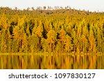 place of power coniferous... | Shutterstock . vector #1097830127