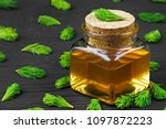 homemade pine cough syrup for...   Shutterstock . vector #1097872223