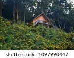 cabin in the woods   Shutterstock . vector #1097990447