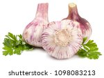 head of garlic isolated on... | Shutterstock . vector #1098083213