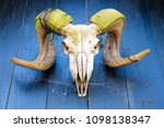 Muffa Horns With A Skull...