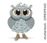 cute cartoon owl wise animal... | Shutterstock .eps vector #1098295163