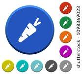 carrot round color beveled... | Shutterstock .eps vector #1098369023