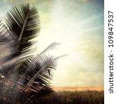 grunge palm background | Shutterstock . vector #109847537