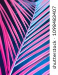 Small photo of Tropical and palm leaves in vibrant bold gradient holographic neon colors. Concept art. Minimal surrealism background.