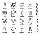 set of 16 simple editable icons ... | Shutterstock .eps vector #1098508883