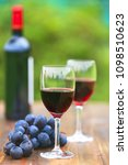 two glasses red wine with wine...   Shutterstock . vector #1098510623