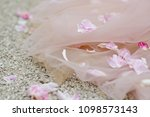 rose petals lie on wedding dress | Shutterstock . vector #1098573143