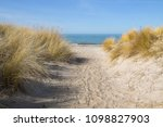 footpath to the beach through... | Shutterstock . vector #1098827903