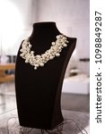 a fake pearl bunch necklace in... | Shutterstock . vector #1098849287