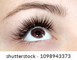 eyelash extension procedure.... | Shutterstock . vector #1098943373