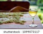 tincture of elder flowers  ... | Shutterstock . vector #1099073117