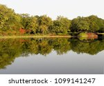 trees and bushes skirting the...   Shutterstock . vector #1099141247