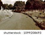 pedestrian in gravestones and... | Shutterstock . vector #1099208693