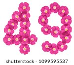 arabic numeral 49  forty nine ... | Shutterstock . vector #1099595537