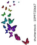 beautiful monarch butterfly...   Shutterstock . vector #1099720667