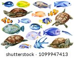 marine life  colored fish ... | Shutterstock . vector #1099947413