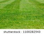 a fragment of a football field. ... | Shutterstock . vector #1100282543