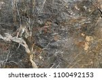 marble stone texture background | Shutterstock . vector #1100492153
