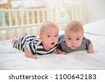 two adorable twin babies... | Shutterstock . vector #1100642183