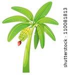 Illustration Of Banana Tree On...