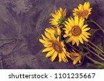 Sunflowers On Gray Vintage...