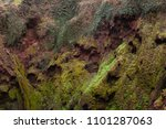 red rock with green plants on... | Shutterstock . vector #1101287063