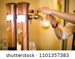 pouring draft beer into the... | Shutterstock . vector #1101357383