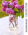 romantic  beautiful lilac... | Shutterstock . vector #1101517133