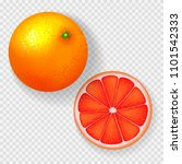 realistic grapefruit isolated... | Shutterstock .eps vector #1101542333