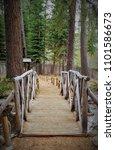 foot bridge over stream in...   Shutterstock . vector #1101586673