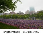 Small photo of ,Boston, MA, USA- May 28, 2018: Thirty-seven thousand American flags, representing the fallen soldiers from Massachusetts are displayed in the Boston Common on Memorial Day.