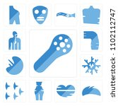 set of 13 icons such as muscle...