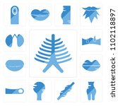 set of 13 icons such as human... | Shutterstock .eps vector #1102118897
