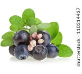 Fresh Berry Blueberries With...