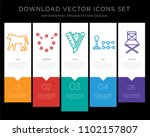 5 vector icons such as baboon ...   Shutterstock .eps vector #1102157807