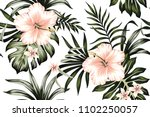 tropical peach hibiscus and... | Shutterstock .eps vector #1102250057
