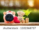sick piggy bank and red heart...   Shutterstock . vector #1102368737